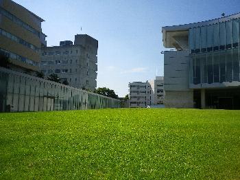 芝生の緑と空の青がマッチしていますね!!