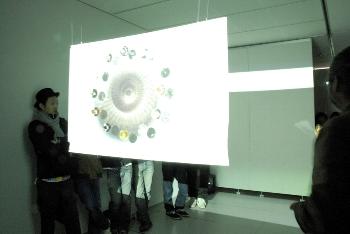 オブジェやフォトグラム、映像など、素材も様々に作られています。