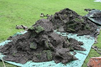 剥ぎ取られた芝生さん、お疲れ様でした!!