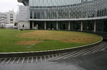 張替直後の総合体育館前広場