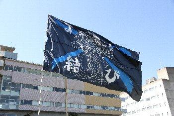 yosakoi001.jpg