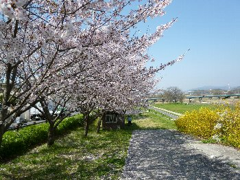 ishikawa001.jpg